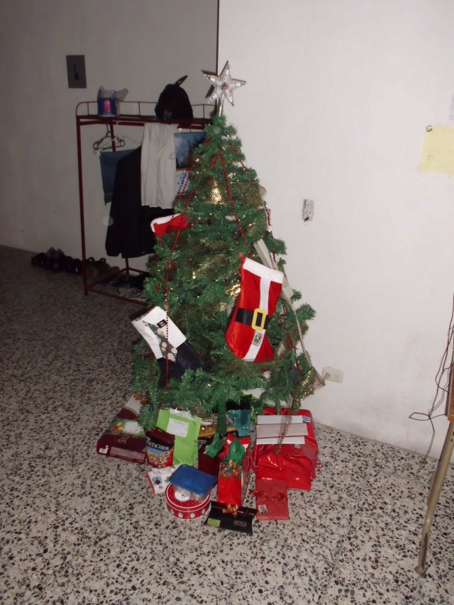 Our Christmas tree with all of the gifts that we got this Christmas. It was pretty darn awesome.